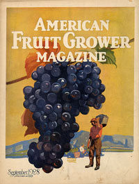 Журнал «American Fruit Grower», сентябрь 1928